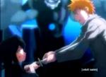 bleach_rukia and ichigo (41)